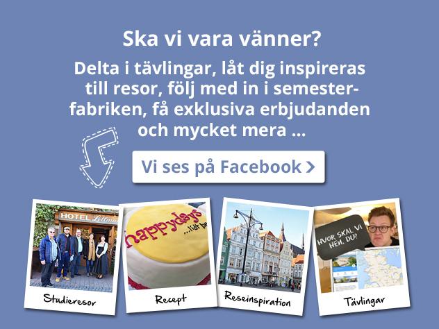 facebook feed se