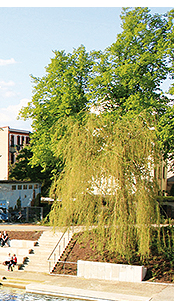 4-stjernet hotel i Brandenburg