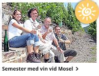 Sydtysklands vinparadis