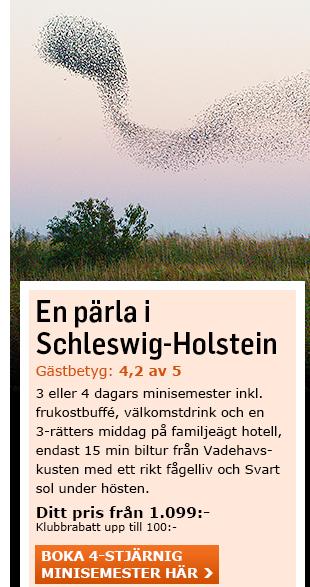 Minisemester i Schleswig-Holstein